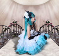 High Quality Anime Cosplay Costume Vocaloid Miku Costume Wig Halloween Costume Dress Bead Necklace Socks Gloves
