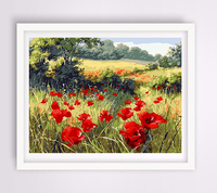 40 50 Cm With Frame Hand Painted Diy Painting By Numbers Paint By Number Red Poppy
