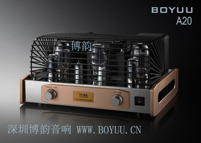 Boyuu A20 Tubes Cover HIFI EXQUIS Reisong Amp Protection Grille