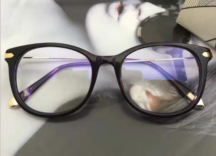 purple tortoise1