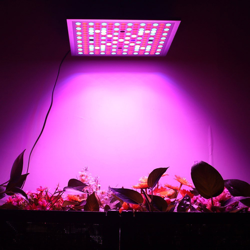 Full Spectrum Hydroponics 45W LED Grow Light Bulb Lamp - Best of all Plant Lights for Indoor and greenhouse plant Growing