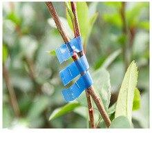 Lange 10000pcs Tapetool Tapener Tying Staple pin Nail Tape Tool fruit tree Secateurs Machine Pack Plant Garden Trunk Connect A20