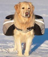 Pack Dog Bag Saddle Big Dog Pack Backpack Outdoor Hiking Camping Training Pet Carrier Product Golden