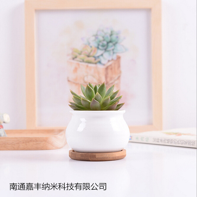 White Ceramic Plant Pots With Bamboo Tray Pottery Flower Pot Small Round Meat Container Z