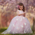 Pink Princess Lace Flower Girls Dress Sleeveless Ball Gown Tulle 2016 Cheap China First Communion Dresses WF33102