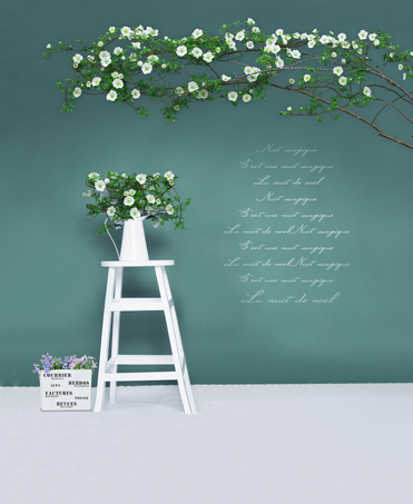 Green Screen Wall Photography Backdrops White Flowers with Ladders Photo Background Cloth Newborn Baby Photo Props Custom Made simple wave photography backdrops 3x5ft newborn boy birthday photography background custom made fotografia