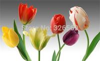 Free shipping colorful tulips flower prints bh 80
