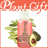 Famous Brand Pure Natural Avocado Oil Increase Skin Elasticity Promote Hair Growth To Wrinkle Avocado Essential
