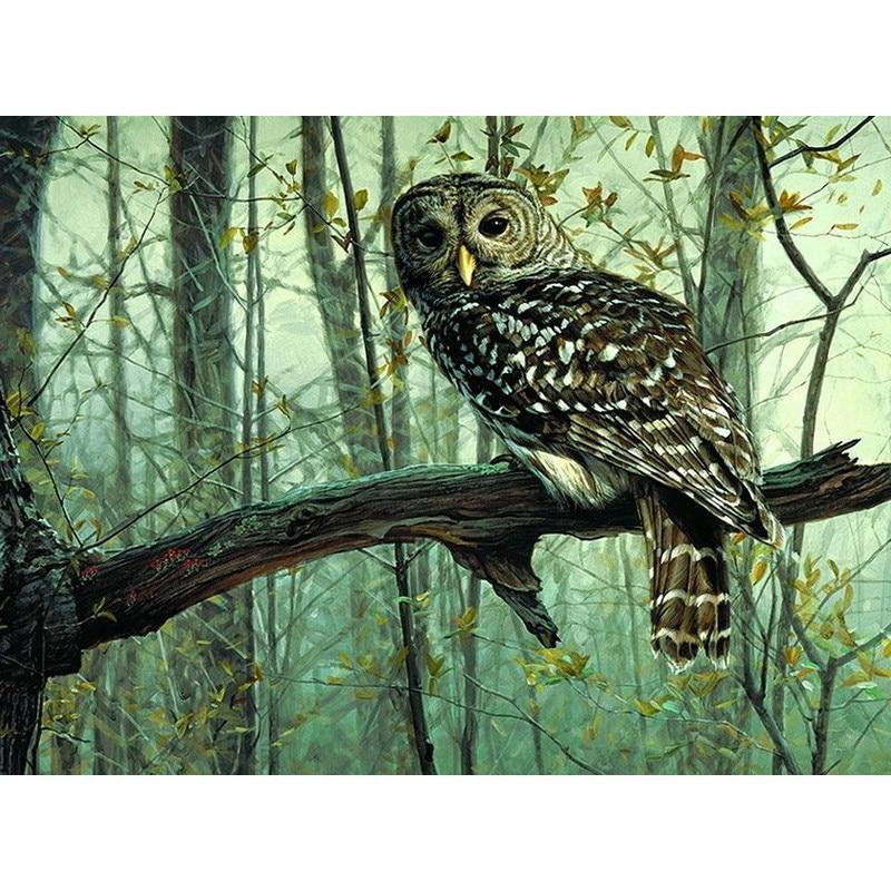 Picture frameless diy pittura by numbers gufo animali picture acrilico kit di disegno vernice su tela per la parete della casa di illustrazioni