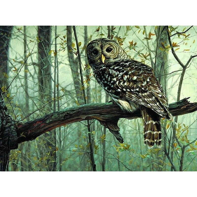 Rahmenlose bild diy malerei by zahlen owl tiere acryl bild kits zeichnung malen auf leinwand für hause wandkunst bild