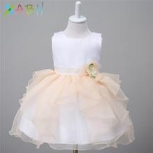 EAZII Cute Baby Dresses for Girls Birthday Bebes sleeveless Princess Dress For Girl Baptism Gown Girls 0-2 Year vestido infantil