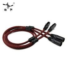 цена на YYAUDIO 1 Pair Hifi 2 XLR Male to Female Balance Audio Cable High performance 3 Pin XLR Connectors Microphone XLR Cable