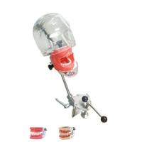 Простой phantom головы модель для стоматолога образования зубного симулятор с прозрачной phantom голову Скамья установленный