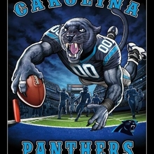 Carolina Panthers - End Zone Laminated   Framed Poster Print (22 x 34)( 6fe268738