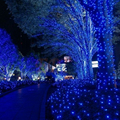 100 LED 10M Outdoor Lighting Party Supplies String Fairy Lights Lamps Christmas Wedding Decoration Home Decoration US Plug #KF