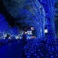 Fuentes Del Partido de Hadas de la Secuencia de 100 LED 10 M de Iluminación Al Aire Libre Lámparas de las Luces de Navidad Decoración de La Boda Decoración Del Hogar EE. UU. Plug # KF