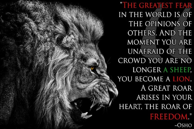 Hot Osho Quotes Lion Inspirational Motivational Fabric Silk Poster
