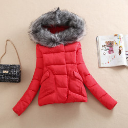2019 Winter cotton-padded jacket coat  Pure color cotton Winter Jacket Women Fur Hood Cotton Padded Coat Parkas For Women Winter 3
