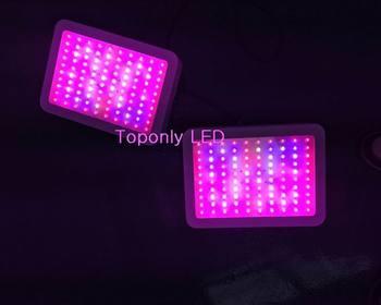 300 w חשמלי מוגן עיצוב פנל led לגדול תאורת 100x3 w מתח גבוה led לגידול צמחים ירוק 4 יח'\חבילה בית המנורה CE & ROHS