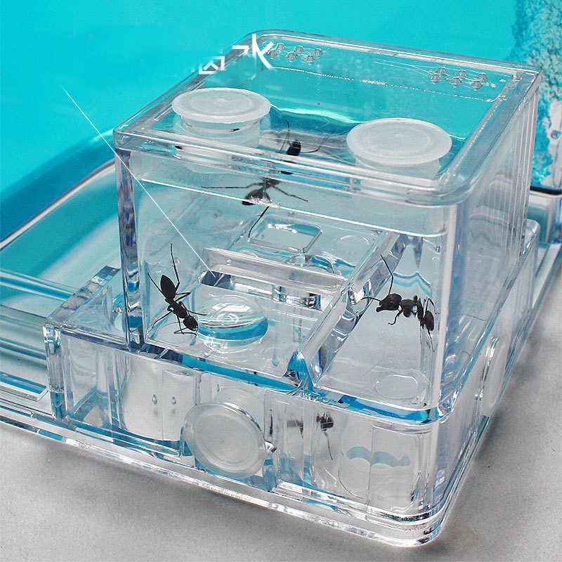 Karıncalar çiftlik karıncalar ev kale şeffaf böcekler teraryum karınca kafes böcekler geçirilmelidir kutusu kreş ekolojik eğitim modeli oyuncak