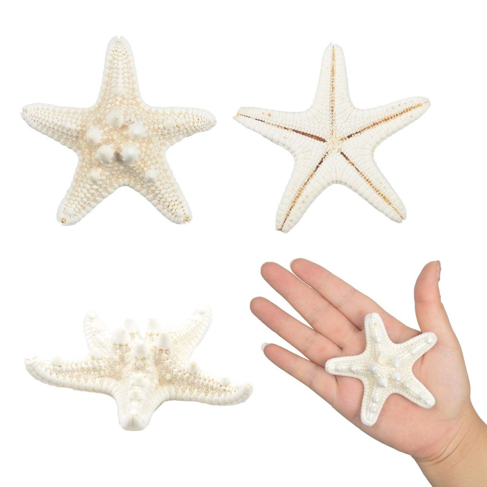3-6cm Starfish Ocean Beach Starfish For Wedding Decor Beach Theme Party, Home Decorations,DIY Crafts, Fish Tank