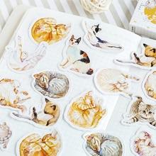 20 упаковок/партия Мини кошачьи болезни милые бумажные этикетки наклейки дневник Клей Скрапбукинг Декоративные DIY наклейки оптом