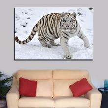 HD White Tiger Living room canvas frame