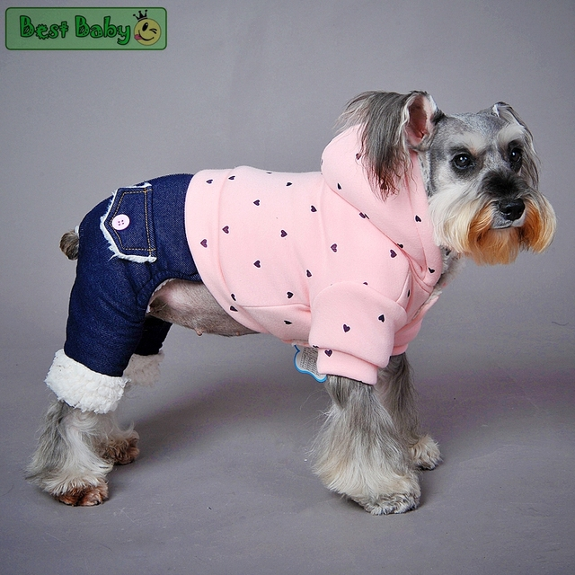 Crown Warm Winter Jacket for Dogs