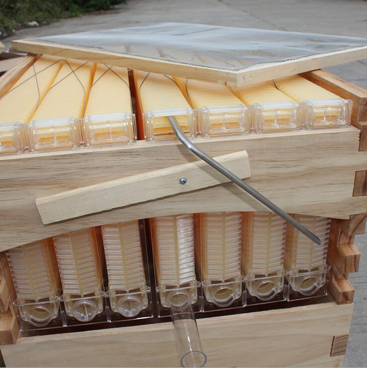 Holz Automatische langstroth honig fluss bee hive beehive mit 7 ...