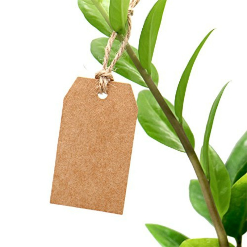 100PCS Natural Kraft Paper Gift Tags Thank you with Red Heart With Jute Twine For Price Tags DIY Crafts Clothing Garment Tags in Garment Tags from Home Garden