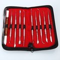 BRAND NEW 10PCS Wax Carving Tool Set Stainless Steel Versatile Kit Dental Instrument Dental Lab Equipment With Holder Case
