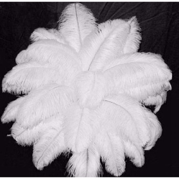 "10 PCS Wholesale Quality Natural OSTRICH FEATHERS ""12-14"" Inch White Color 1"