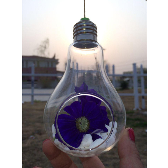 Light Bulb Shape Glass Hanging Hydroponic Plant Container Wedding Wall Deco Home Decoration Flowers Hanging Container 5
