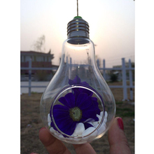 Light Bulb Shape Glass Hanging Container