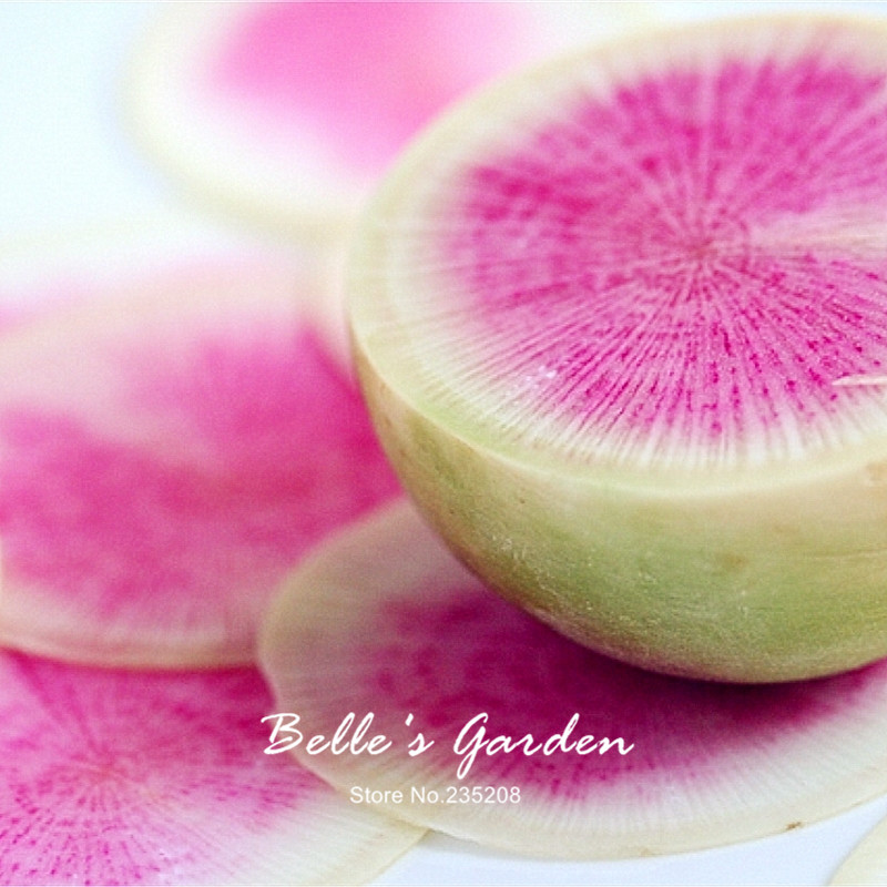 100pcs unusual ball shaped watermelon radish seeds rare pink interior color oganic radish home garden fruit vegetable seeds in bonsai from home garden
