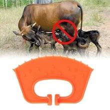 Инструмент для отлучения теленка, коровы, коровы, скот, скот, бычий скот, зажим для носа, доильный стоп