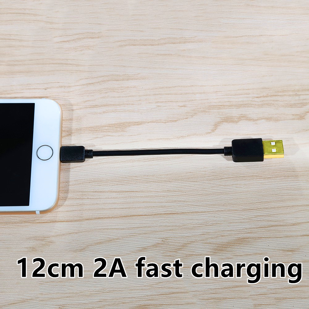 CatXaa 12cm <font><b>Short</b></font> Charging <font><b>Cable</b></font> 2A Fast Charger Gold Plated Data Adapter Brief Wire For Apple 5 5s 6 6s 7 8 X Xs Plus image