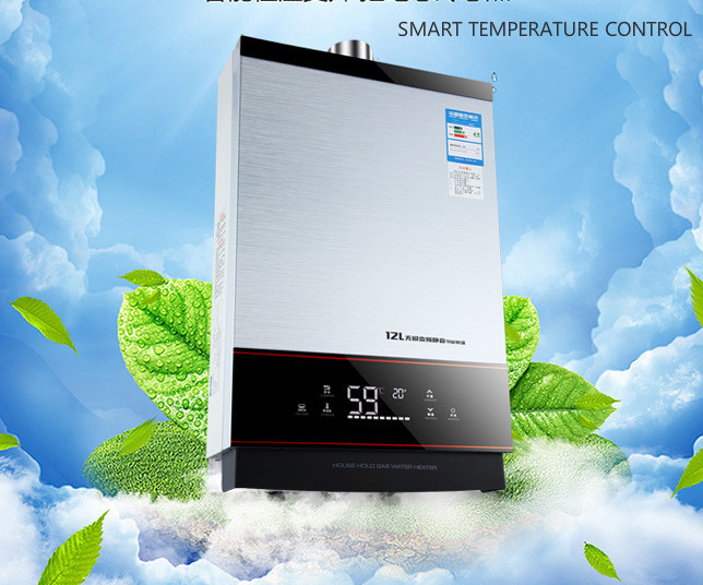 Newest  SMART Constant Temperature Control Strong Emission Type Lgp Instant / Tankless 12L Lpg Propane Gas Hot Water Heater