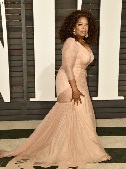 Oprah Winfrey Oscar Celebrity Dresses plus size v neck sheath chiffon with long sleeves mother of bride groom dresses BO9521 144 (10)