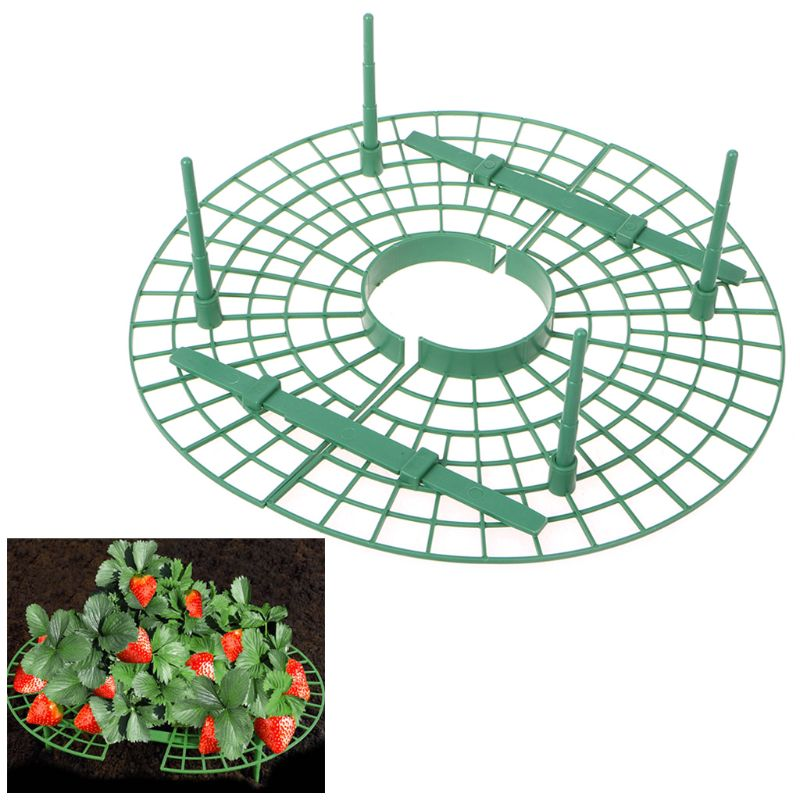 Image 3 - Plastic Handy Strawberry Supports Keep Fruit Fresh Non Rot Ground Climbing Vine Plant Vegetable Rack Home DIY Gardening Tool-in Plant Cages & Supports from Home & Garden