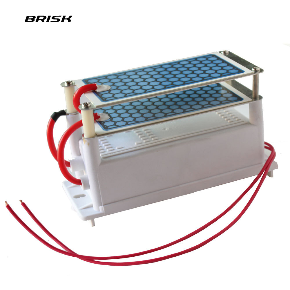 Brisk Portable Ceramic Ozone Generator Double Integrated Ceramic Plate Ozonizer Air Water Air Purifier Parts 220V/110V 10g m312 mitsubishi new style mv ceramic lower isolator plate x085c130g51 117 106 t20mm edm wear parts