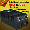 Inverter Welder Home 220V DC Mma Welding To Co2 Gas Shielded Welding Two Function Intelligent Converter