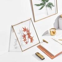 Copper Strip Glass Photo Frame Hanging Photo Clip Retro Picture Frame Metal Photo Clip Glass Plant Specimen Box