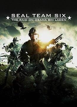 《海豹六队:突袭奥萨马本拉登》2012年美国剧情,动作,犯罪电影在线观看
