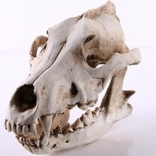 Creative Resin Craft Wolf Skull Statue&Sculpture Ornament Home Decoration Accessories Ornaments Animal Skull Bar Decoration