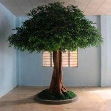 Hot-sale! 1 pcs giant & small money tree seeds mini bonsai tree seeds Pachira macrocarpa seeds Walp DIY for garden Home