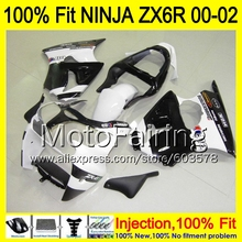 8Gifts Injection mold Body For KAWASAKI NINJA ZX-6R 00-02 1HM77 ZX 6R ZX6R 00 01 02 ZX636 636 2000 2001 2002 Fairing white black