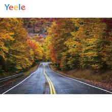 Yeele Landscape Red Maple Forest Road Drawing Decor Photography Backdrops Personalized Photographic Backgrounds For Photo Studio diana balmori drawing and reinventing landscape