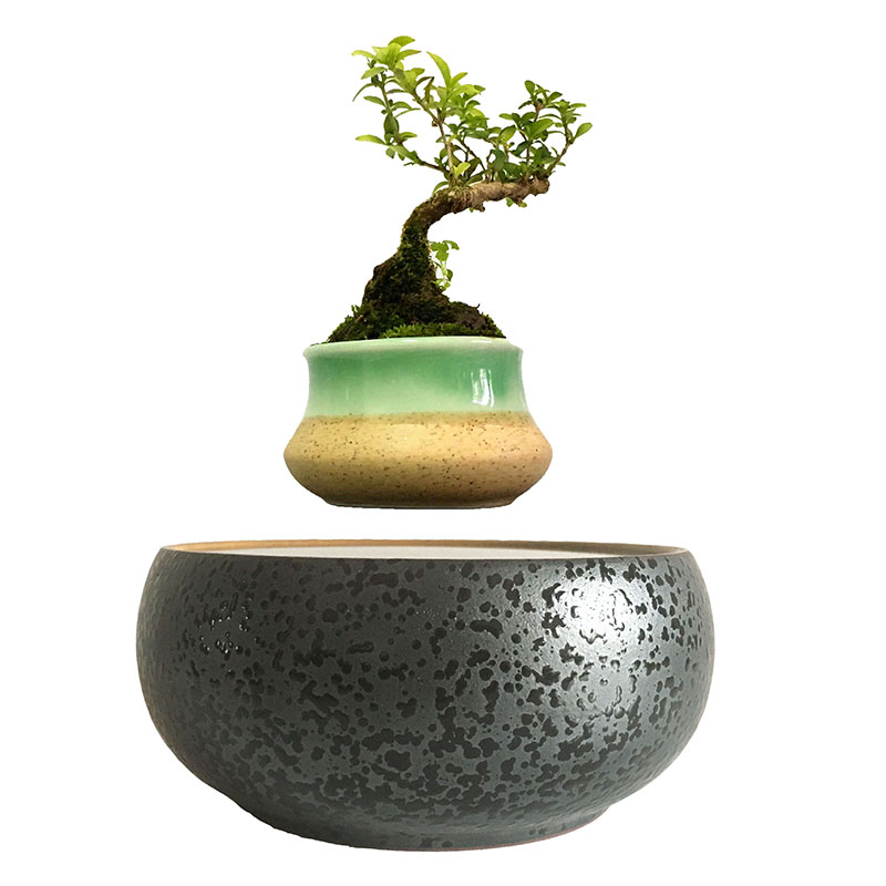 Acquista all 39 ingrosso online novit vaso di ceramica da for Bonsai vasi