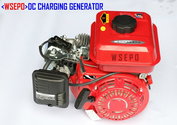 WSE-2KW (48 V/60 V Optional) Gasoline DC Battery Charging Generator System for
